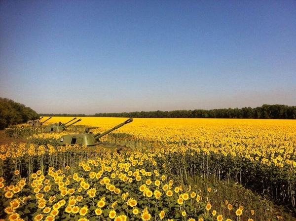 Ukraine landscape today