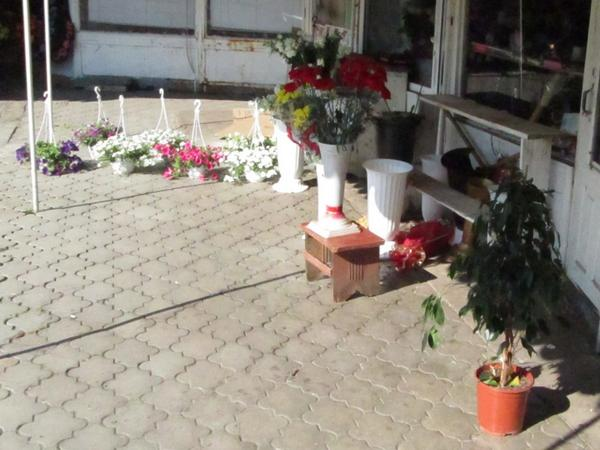 Make Love not War. Flowers in stock again in Slavyansk