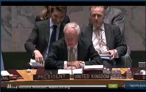 UNSC on Ukraine crisis