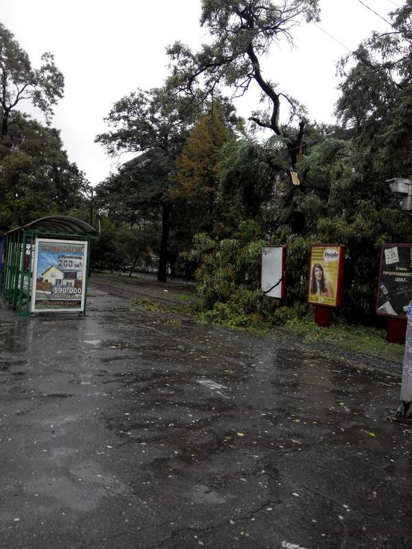 Heavy storm in Eastern, Central and South Ukraine - power cuts, lots of fallen trees