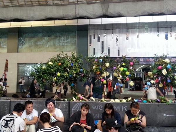 The umbrella trees in  Mong Kok