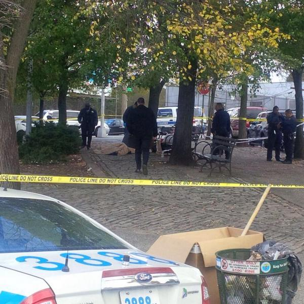 9th Ave & 39 St. Dead body found in the park, NYPD, ESU and Medical on scene.
