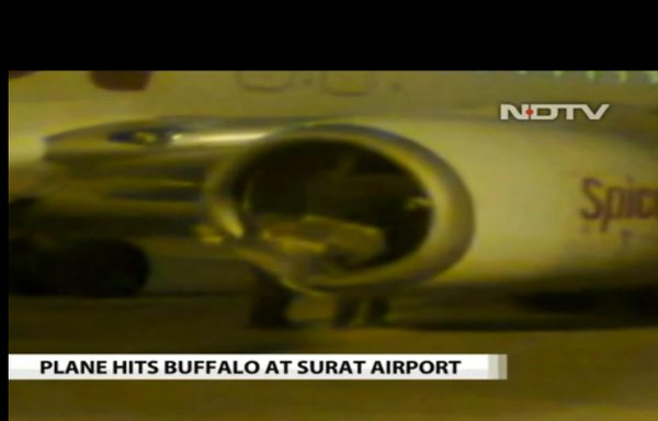 Plane collided with another on the runway in Gujarat.
