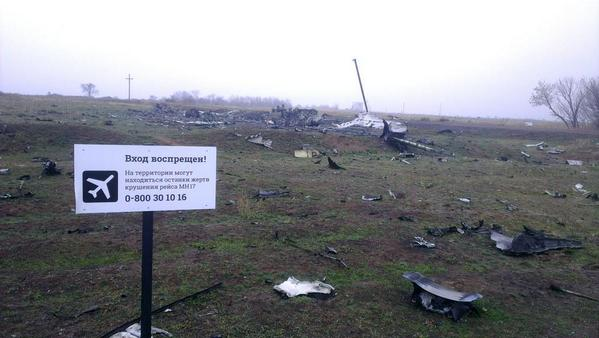 At the crash site of a Boeing MH17, Hrabove. Most of the aircraft parts still at the site