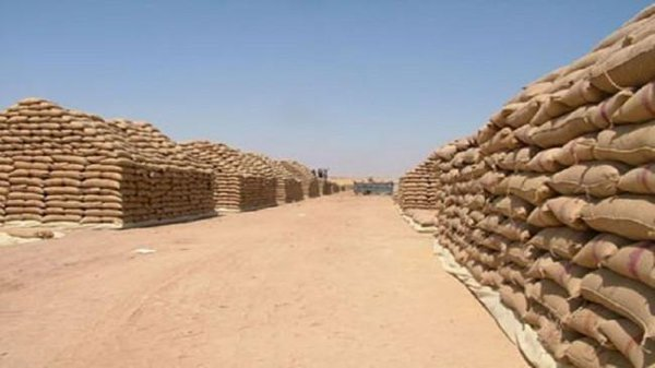 ISIS smuggles 1 million tons of wheat and barley to Syria