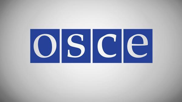 OSCE will try to persuade the militants to cease fire